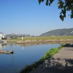 Garden Route South Africa – Knysna
