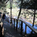 Garden Route South Africa – Wilderness