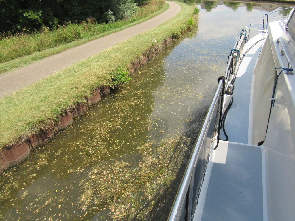Cut grass went into canal and into our bowthruster